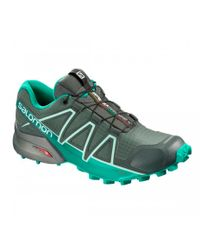Salomon Speedcross 4 GTX Ws - Kengät - Balsam Gr/Tropical Green/Beach Glass