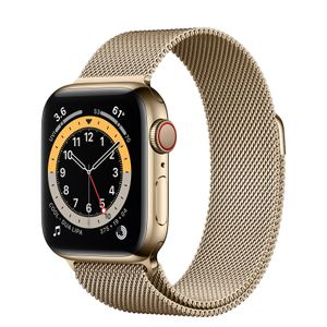APPLE Watch Series 6 40mm 4G guld/guld Gold Stainless Steel Case med Gold Milanese Loop (M06W3DH/A)