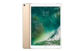 "APPLE 10,5"" iPad Pro 256GB WiFi Guld"
