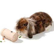 Wooden skill toy rodent