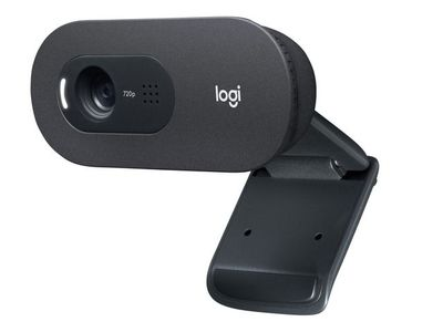 LOGITECH C505 HD Webcam - BLACK - EMEA (960-001364)