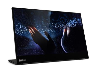 LENOVO ThinkVision M14T 14inch FHD 16:9 LCD 6ms USB 3.1 Type-C TopSeller (62A3UAT1WL)