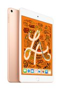 APPLE iPad mini Wi-Fi 64GB - Gold (2019)