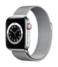 APPLE AW Series 6 GPS Cell 40mm Silver St Steel Case Silv Milanese