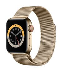 APPLE AW Series 6 GPS Cell 40mm Gold St Steel Case Gold Milanese