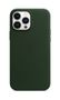 APPLE iPhone 13 Pro Max Leather Case with MagSafe Sequoia Green