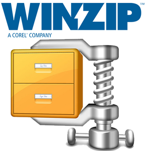 COREL WINZIP Pro 22 Full Windows English - non-profit (100-199 users) (LCWZ22PROMLAE)