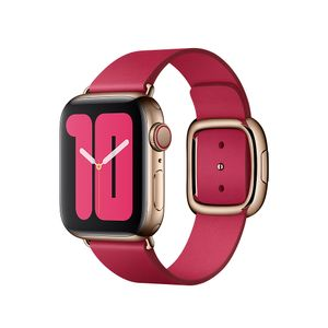 APPLE 40mm Raspberry Modern Buckle - Large (MXPC2ZM/A)