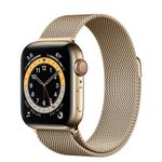 APPLE Watch Series 6 40mm 4G gull/gull Gold Stainless Steel Case med Gold Milanese Loop (M06W3DH/A)