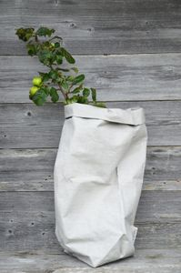 XX-Large Paper Bag, White