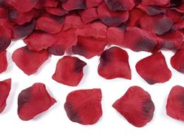 PartyDeco Roseblader Røde - 100stk