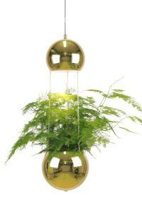 "Globen Lighting Lampe ""Planter"" - messingfinish (205-241163)"