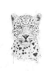 "Balaz Solti Poster - ""Lovely Leopard"" (365-BS1407)"