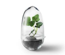 Design House Stockholm Grow Minidrivhus H14cm