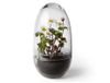 Design House Stockholm Grow Minidrivhus L H23 (408-2376-0000)