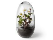 Design House Stockholm Grow Minidrivhus L H23