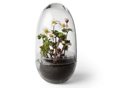 Design House Stockholm Grow Minidrivhus H23cm