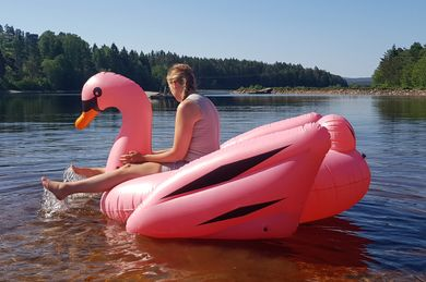 Summer Collection Flytedyr Svane 190cm, Rosa (496-SWAN-02-PINK)