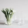 dbkd Simple Glass Vase H18cm (402-FDC02)