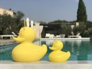The DUCK LED-Lampe Badeand Gul H31 Small (590-duck-s-yellow-020)