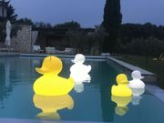 The DUCK LED-LampeBadeandHvitH31 Small (590-duck-s-white-021)
