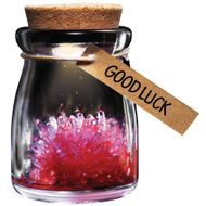 "GADGET Crystal Wish Flower Rød ""Good Luck"" (CW-GH-1003-RED)"