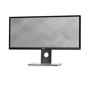 DELL UltraSharp 29 Ultrawide Monitor - Demo (U2917W-Demo)