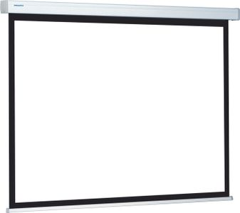 Projecta ProScreen 141x220 Wide (16:10) Datalux
