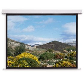 Projecta Descender Electrol 173x300 HDTV(16:9) High Contrast